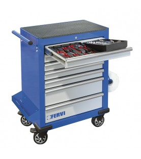 Tool rolling cabinet with 142 automotive tools FERVI C960/AM01